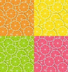 Citrus backgrounds vector