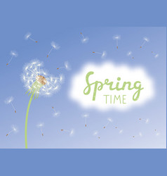 inscription spring time dandelion with vector image