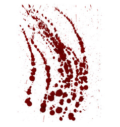 splattered blood stain on white background vector image