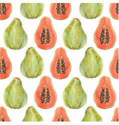 Watercolor papaya pattern vector