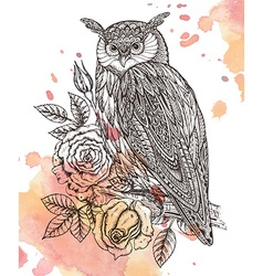 wild totem animal - Owl in ornamental gra vector image
