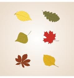 Autumn leaves set background vector image