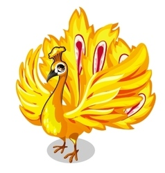 Fabulous Golden bird on a white background vector image