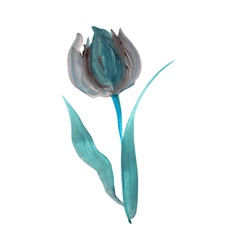 oil painted tulip vector image vector image