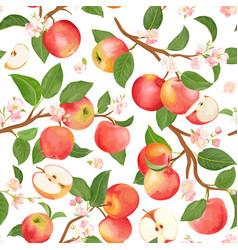 autumn apple seamless pattern summer fruits vector image