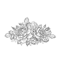 Hand drawn floral bunch with roses buds and leaves vector
