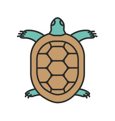 Tortoise color icon vector