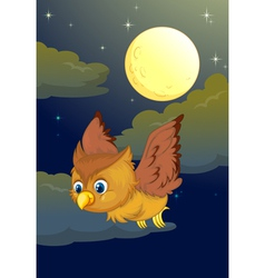Cute Owl Flying in the evening vector image