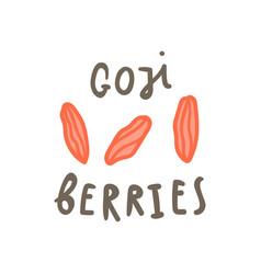 goji berries superfood vector image vector image