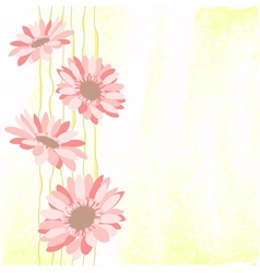 Springtime Colorful Daisy Flower vector image vector image