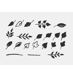 Hand drawn leaves icons and elements vector image vector image