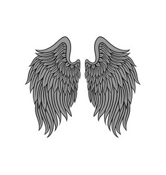big open angel wings with gray feathers and black vector image