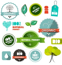 Bio Organic Natural Product Flat Design Labels - vector image