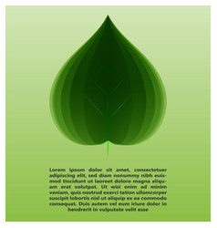 eco leaf information vector image