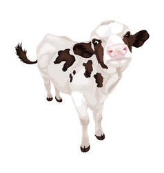 Little white cow with black spots vector
