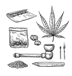Marijuana or cannabis drawing set plant vector