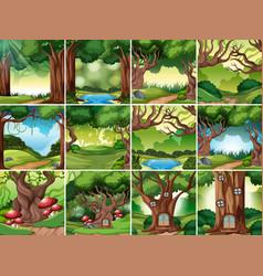 set of rainforest scene vector image