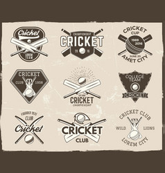 Set retro cricket sports template logo designs vector
