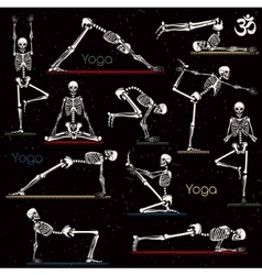 Skeleton practicing yoga vector image
