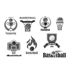 Basketball championship award icons set vector