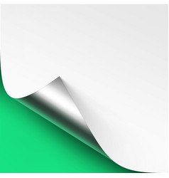 curled metallic silver corner white paper vector image