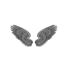 Open bird or angel wings with gray feathers and vector