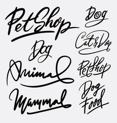 pet shop and animal hand written typography vector image