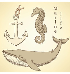 Sketch seahorse whale and anchor in vintage style vector image