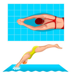 Swimmers in competition swim sport vector