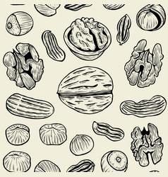Walnut background pattern vector