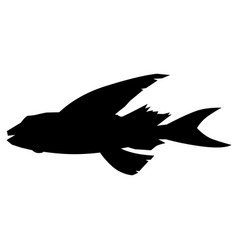 flying fish side view vector image vector image
