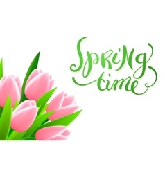 Spring time with flowers vector image vector image
