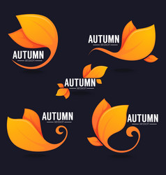 collection of bright autumn leaves on dark vector image
