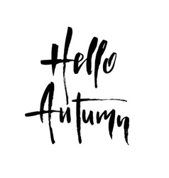 Hello autumn brush lettering vector