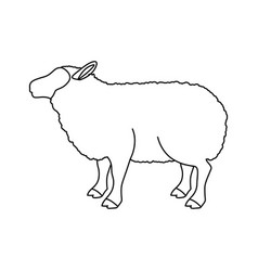 Lamb livestock animal design vector