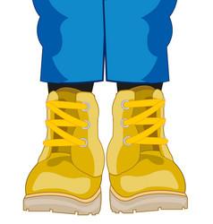 Legs dressed in shoe vector