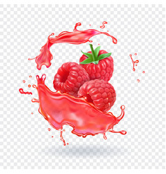 Raspberry juice fresh fruit splash vector