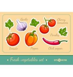 Set of fresh vegetables vector