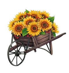 Watercolor wooden wheelbarrow with sunflowers vector