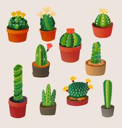 cute cartoon cactus home plant nature vector image