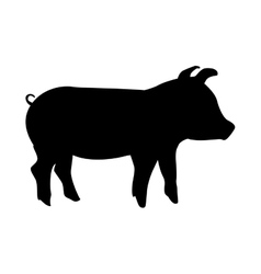 pork animal farm isolated icon design vector image