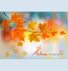 Autumn nature background with colorful leaves and vector