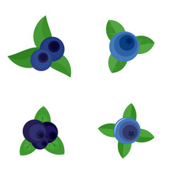 Blueberry sweet fruit icons set flat style vector