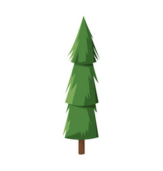 cartoon pine tree trunk nature icon vector image
