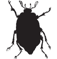 Chafer vector