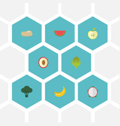 Flat icons litchi praties cabbage and other vector