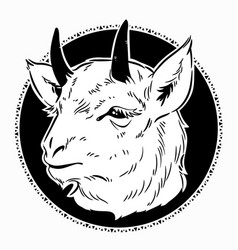 goat head in a round frame vector image