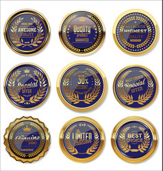 gold and blue medal collection vector image