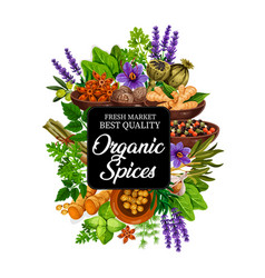 Organic spice icon with herbs and plants or seeds vector