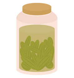Pickles in jar on white background vector